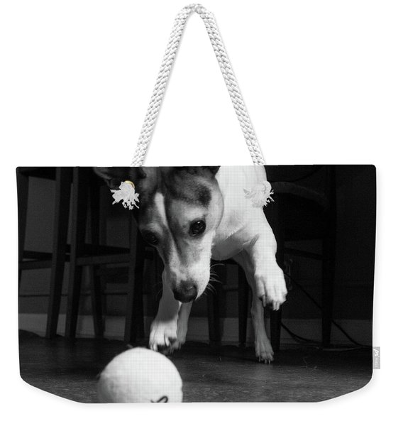 Portrait Of A Jack Russell Terrier Dog Weekender Tote Bag