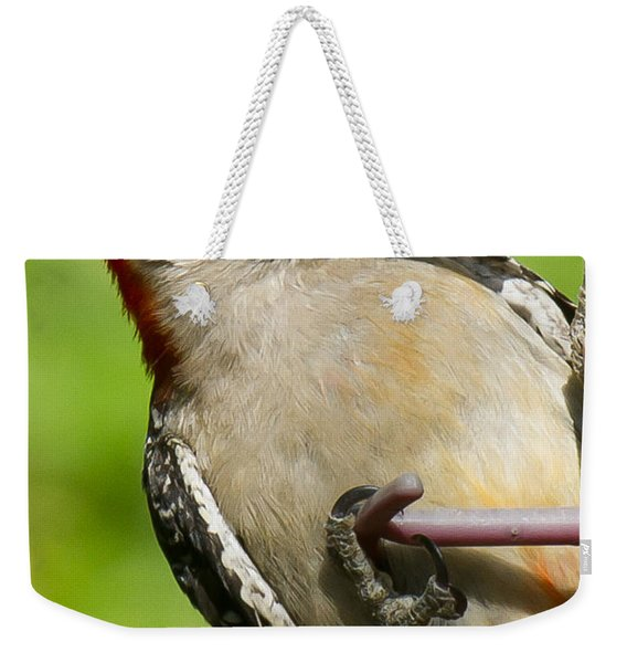 Red Bellied Woodpecker Weekender Tote Bag