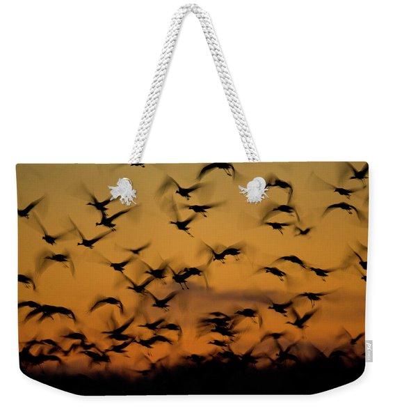 Sandhill Migration Weekender Tote Bag