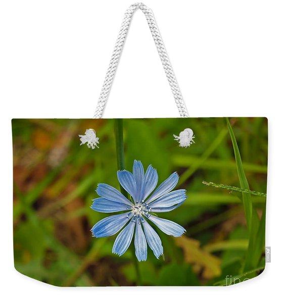 Blue Chicory Flower  Weekender Tote Bag
