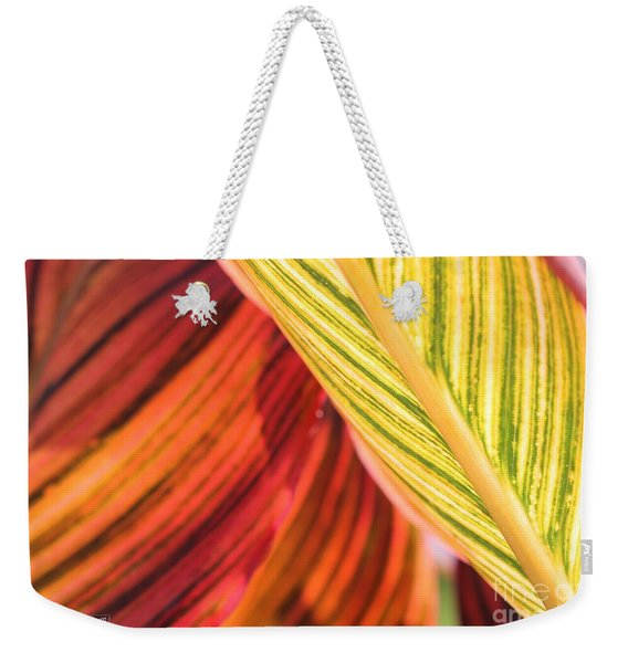 Canna Lily Named Durban Weekender Tote Bag