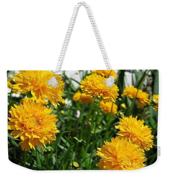 Coreopsis Named Early Sunrise Weekender Tote Bag