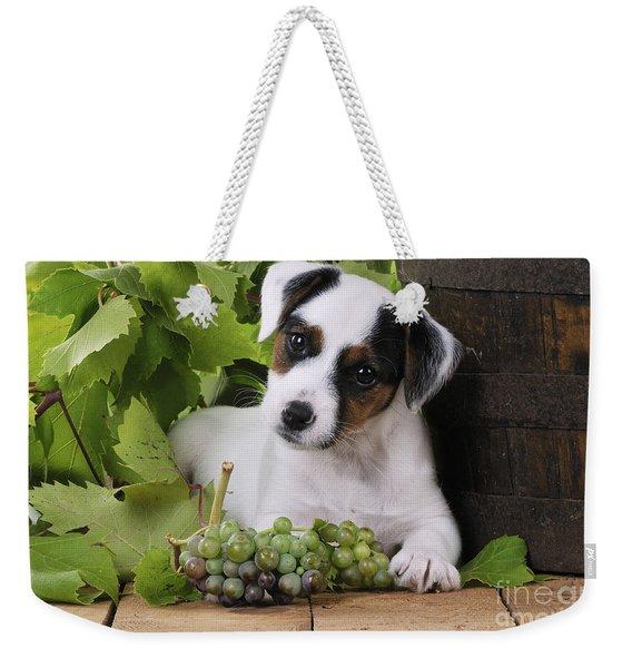 Parson Russell Terrier Puppy Weekender Tote Bag