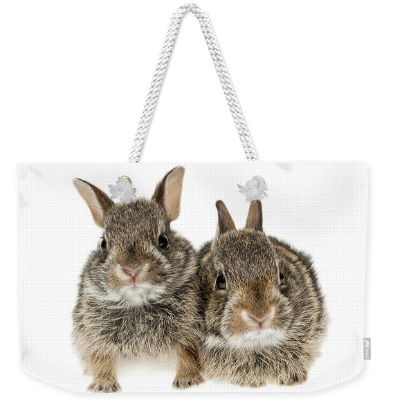 Two Baby Bunny Rabbits Weekender Tote Bag
