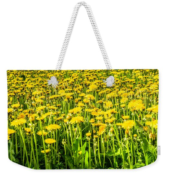Weekender Tote Bag featuring the photograph Yellow Dandelions by Michael Goyberg