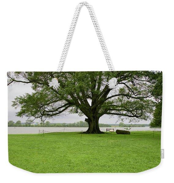 350 Year Old Willow-oak Of Shirley Weekender Tote Bag