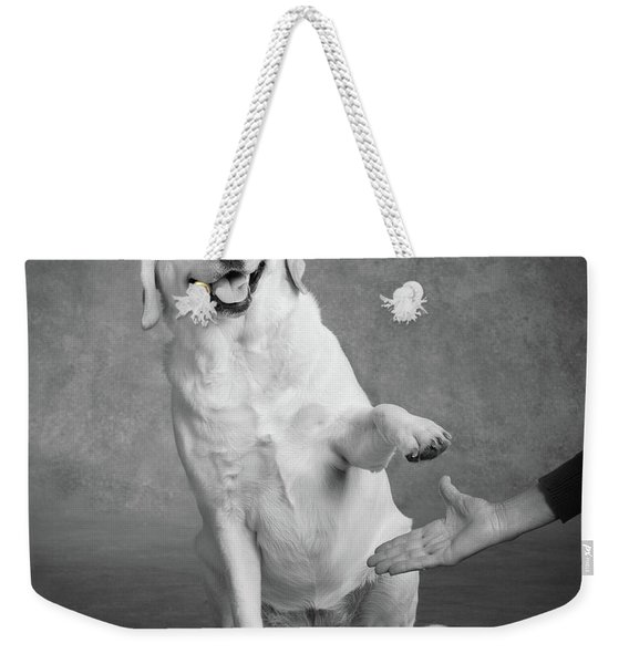 Portrait Of A Yellow Labrador Dog Weekender Tote Bag