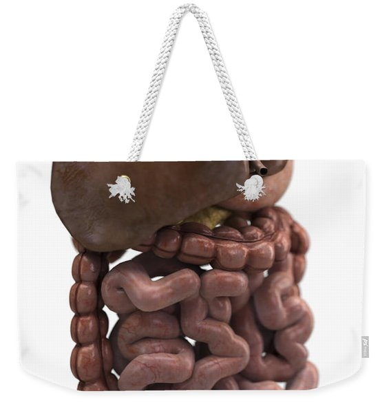 The Digestive System Weekender Tote Bag
