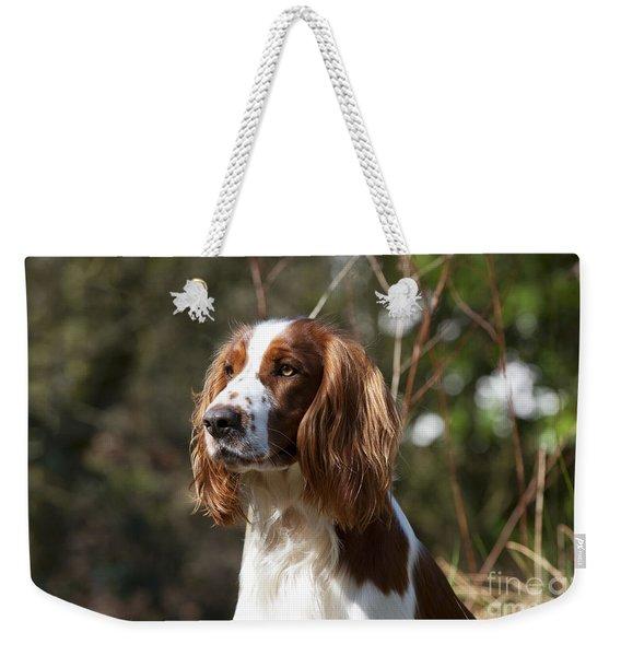 Welsh Springer Spaniel Weekender Tote Bag