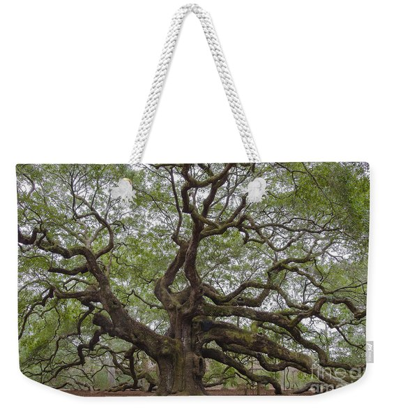 Sc Angel Oak Tree Weekender Tote Bag