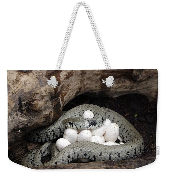 Grass Snake With Eggs Weekender Tote Bag