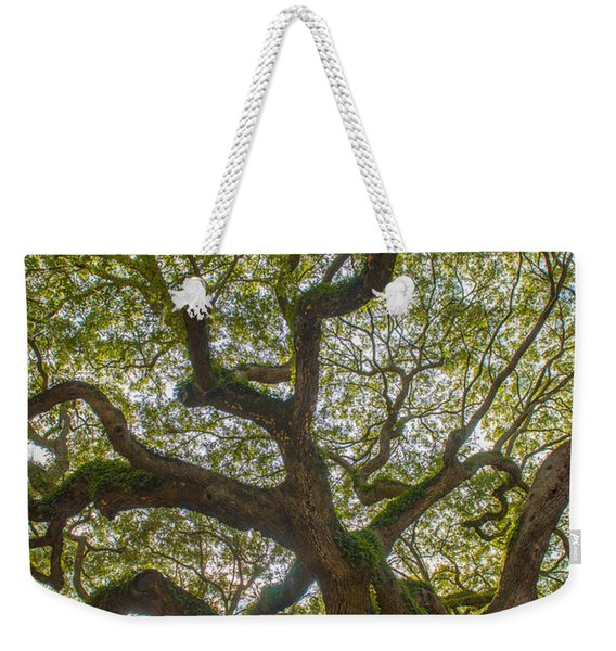 Island Angel Oak Tree Weekender Tote Bag