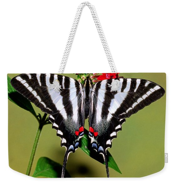 Zebra Swallowtail Butterfly Weekender Tote Bag