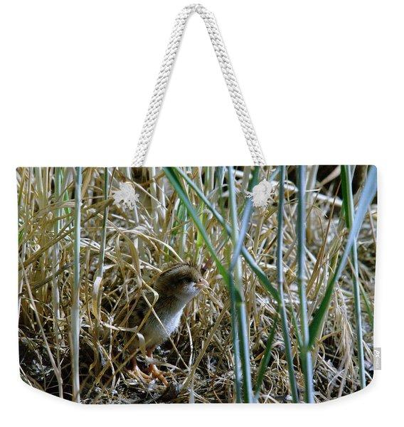 A Baby Quail Weekender Tote Bag