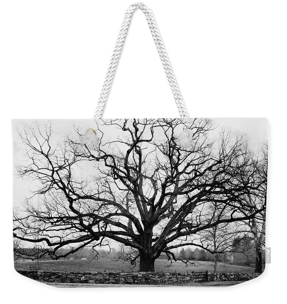 A Bare Oak Tree Weekender Tote Bag