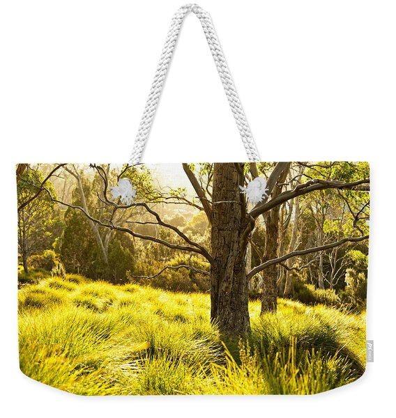 A Bare Tree Weekender Tote Bag