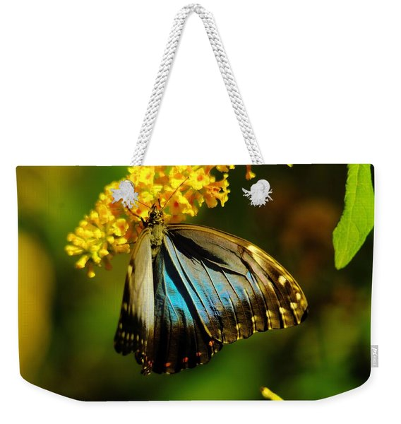 A Beautiful Butterfly Weekender Tote Bag