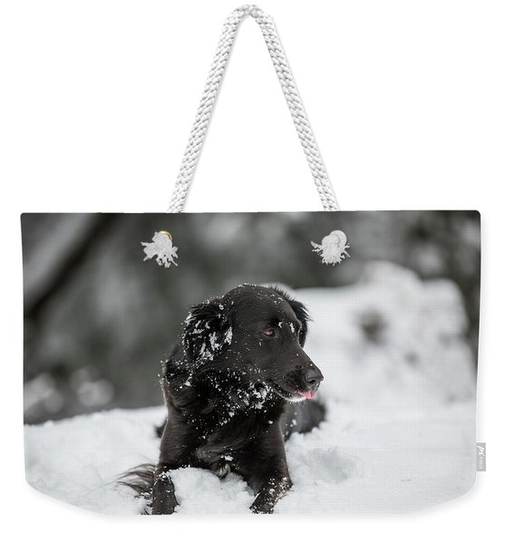 A Black Dog In The Snow Weekender Tote Bag