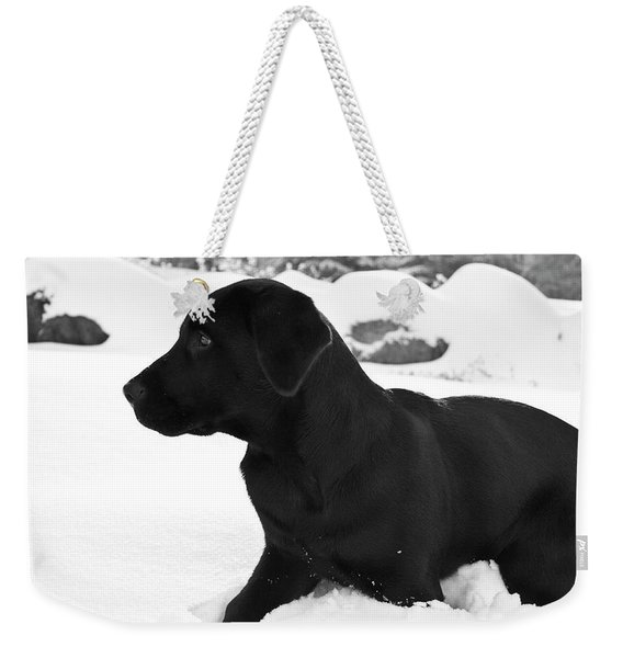 A Black Labrador Retriever Puppy Plays Weekender Tote Bag
