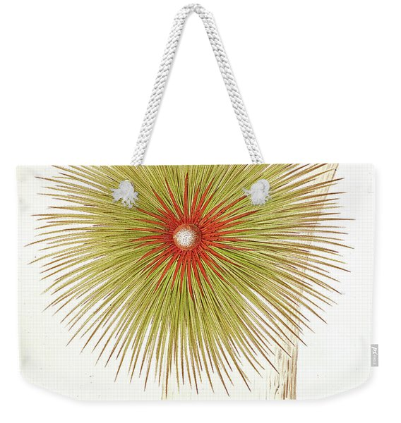 A Bromelia Found In The Andes Weekender Tote Bag