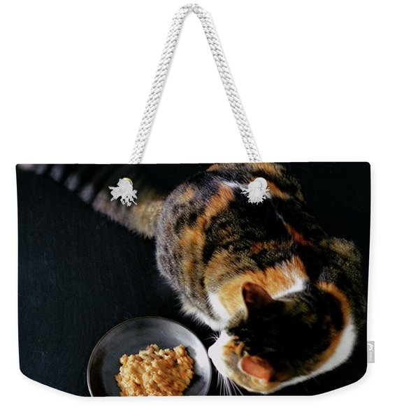 A Cat Beside A Dish Of Cat Food Weekender Tote Bag