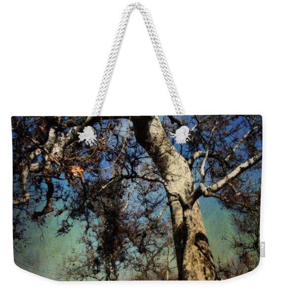 A Day Like This Weekender Tote Bag