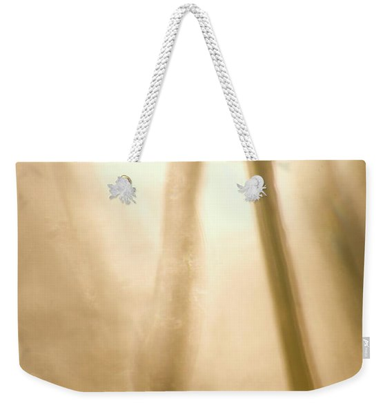 A Dragonfly In Early Morning Weekender Tote Bag