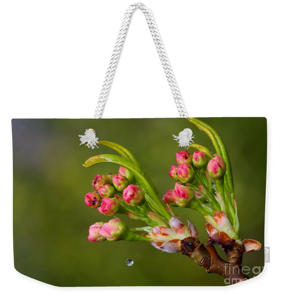 Weekender Tote Bag featuring the photograph A Drop Of Water by Jeremy Hayden