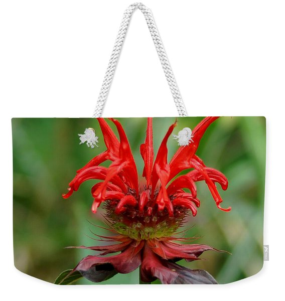 A Flowering Red Castle Beauty Weekender Tote Bag