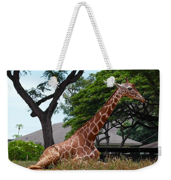 A Giraffe Rests In Honolulu Weekender Tote Bag