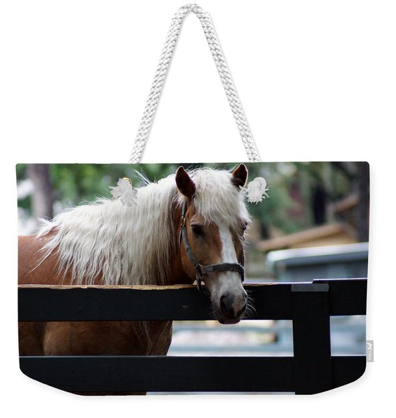 A Hilton Head Island Horse Weekender Tote Bag