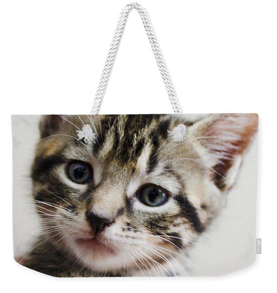A Kittens Helping Hand Weekender Tote Bag