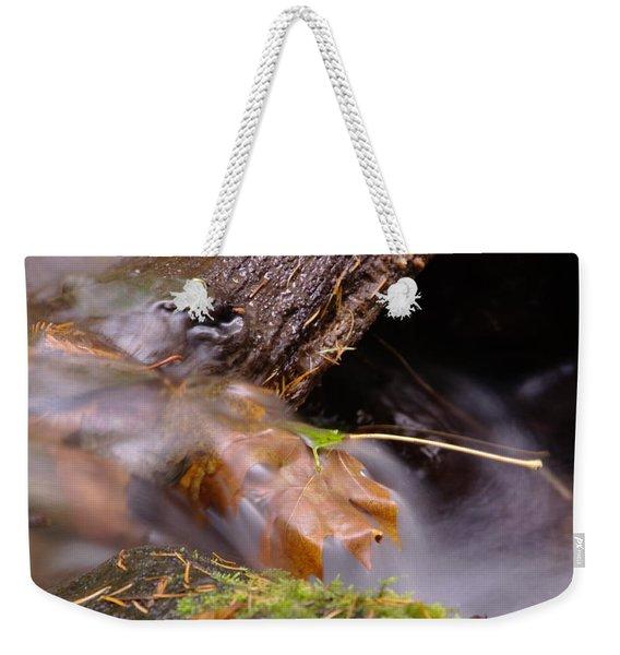 A Leaf Captured Weekender Tote Bag
