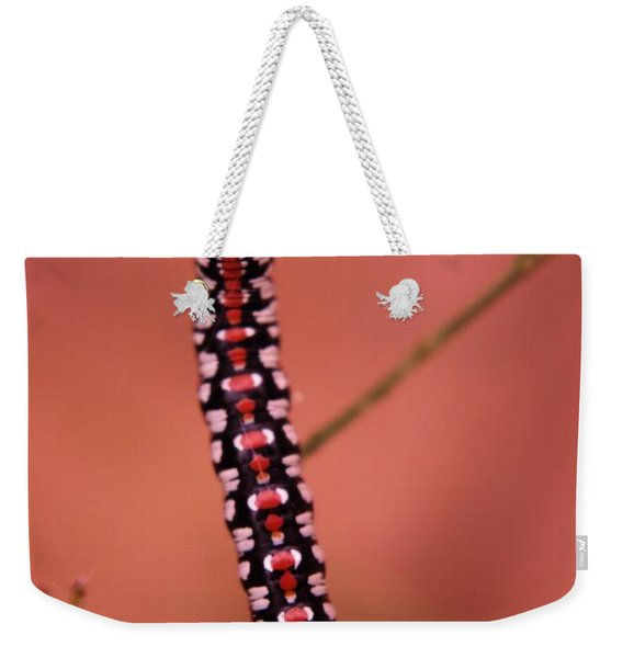 A Little Caterpillar Weekender Tote Bag