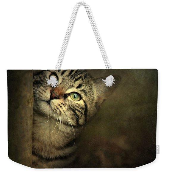 A Little Shy Weekender Tote Bag