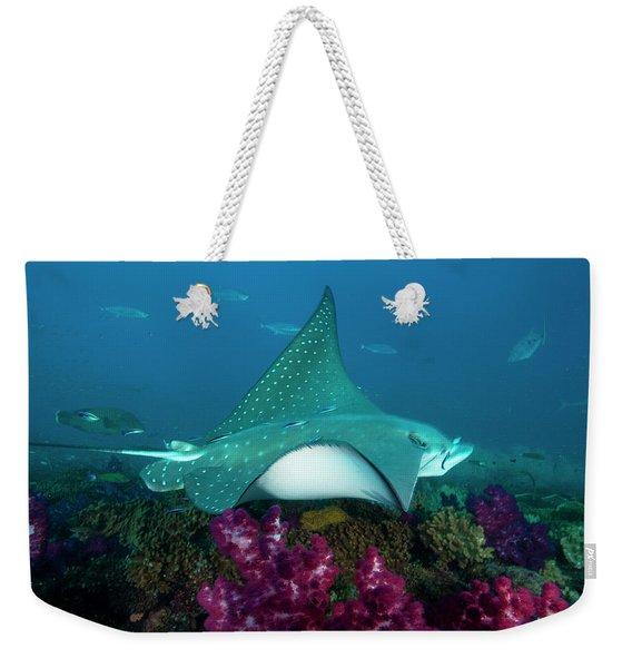 A Manta Ray Cruises Over The Yongala Weekender Tote Bag