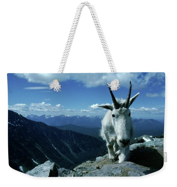 A Mountain Goat Climbs On The Edge Weekender Tote Bag