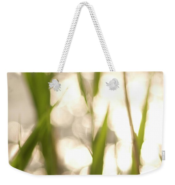 A Plant And Stream In The Buffalo Gap Weekender Tote Bag