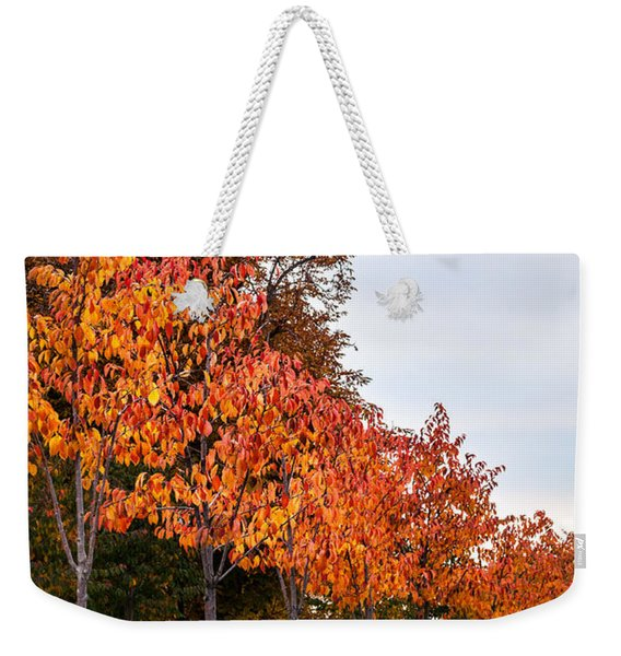A Row Of Autumn Trees Weekender Tote Bag
