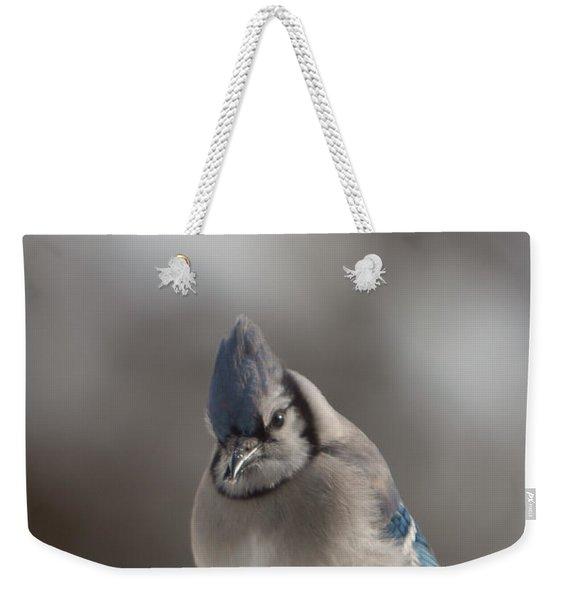 A Blue Jay Sits Waiting Weekender Tote Bag