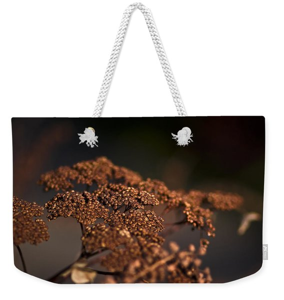 A Shadow Of The Past Weekender Tote Bag