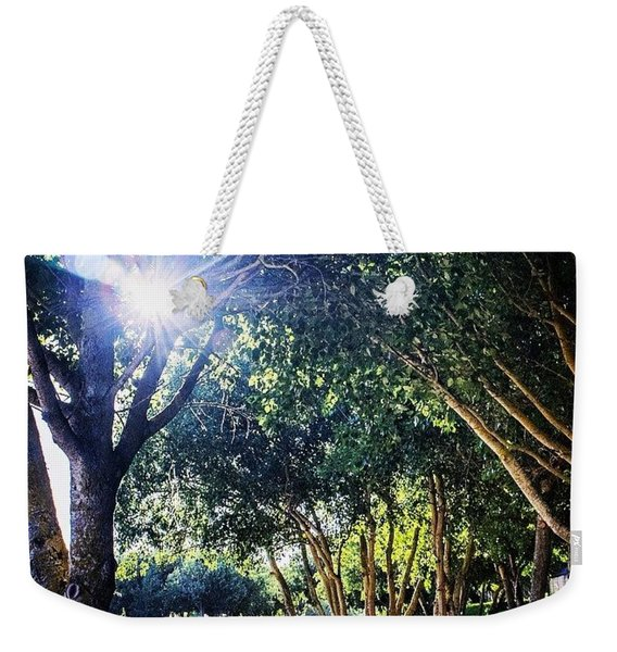 A Spark Through Leaves And Limbs Weekender Tote Bag