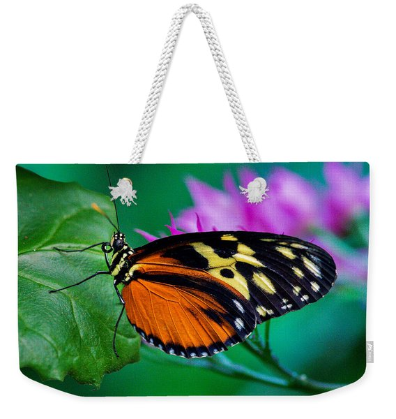 Weekender Tote Bag featuring the photograph A Splash Of Colour by Garvin Hunter