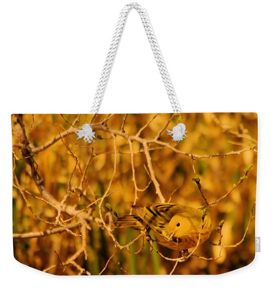 A Yellow Bird Posing Weekender Tote Bag
