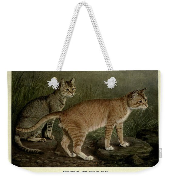 Abyssinian And Indian Cats Weekender Tote Bag