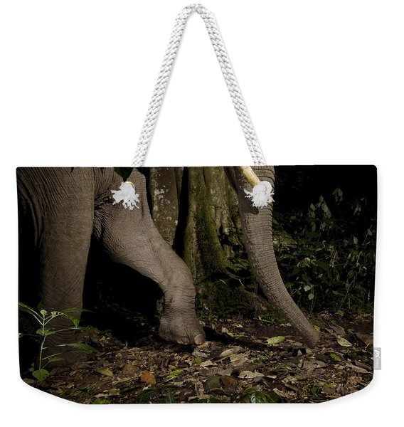African Elephant Night Walk Kibale Np Weekender Tote Bag
