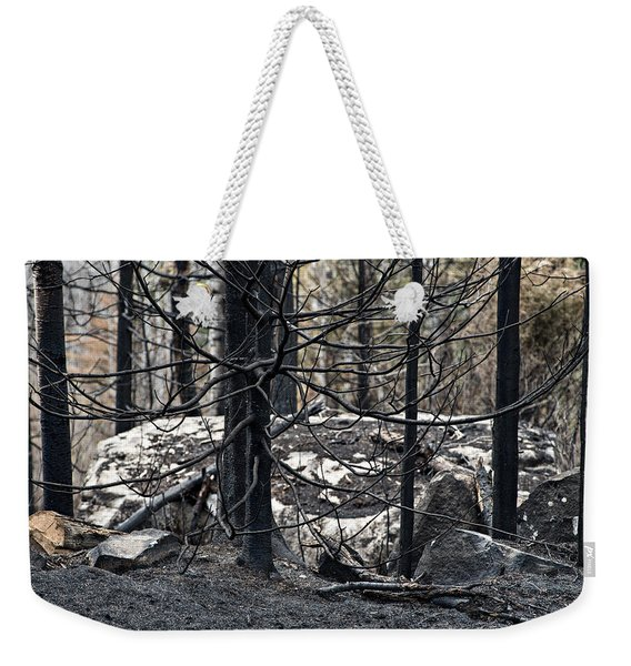 Weekender Tote Bag featuring the photograph Aftermath by Doug Gibbons