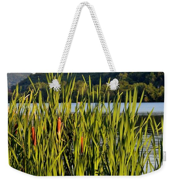 Afternoon Walk Weekender Tote Bag