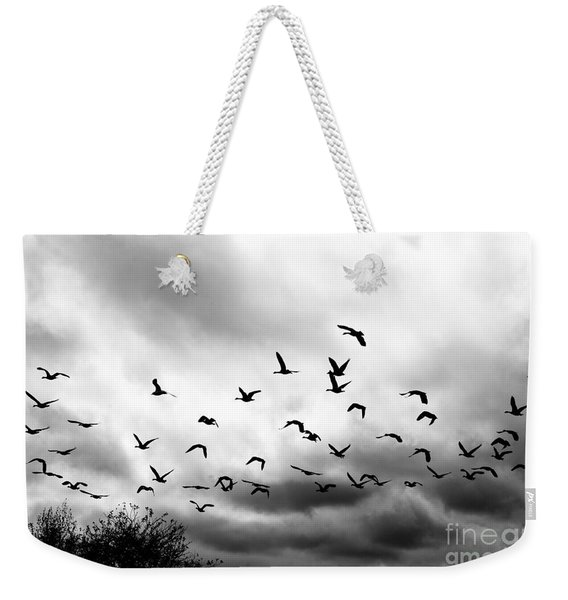 Ahead Of The Storm Weekender Tote Bag