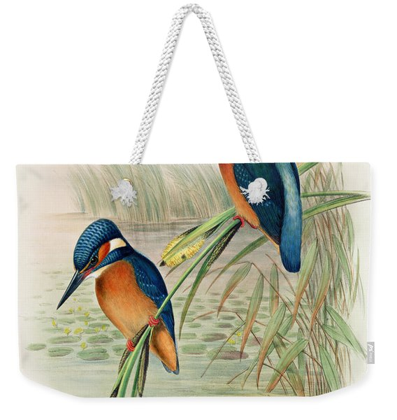 Alcedo Ispida Plate From The Birds Of Great Britain By John Gould Weekender Tote Bag
